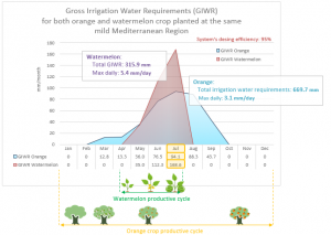 gross irrigation water requirements for orange and watermelon crop planted at the same mild mediterranean region